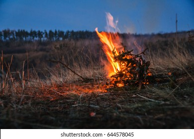 Big campfire at the river after red sunset mountain pine forest