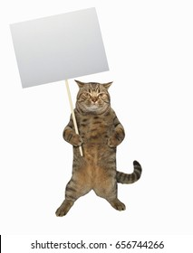 The big cat is holding a blank sign.