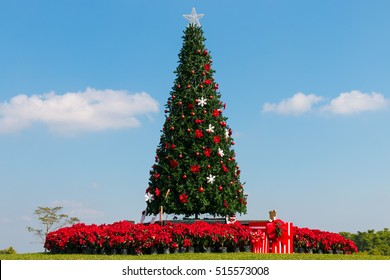 the big christmas tree - How To Decorate A Big Christmas Tree