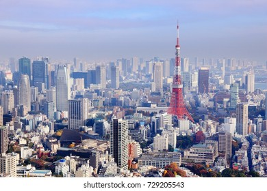 Big city view - Tokyo, Japan. Cityscape photo.