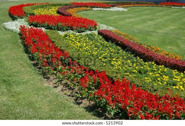 Big colorful flower-bad