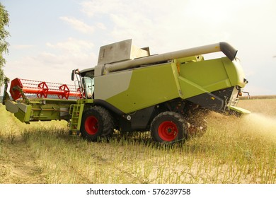 Big combine harvesting oilseed rape for bio fuel turning on headland, header lifted up, grinding straw, dust in air, fertilized field with manure, hot sunny summer day, side perspective