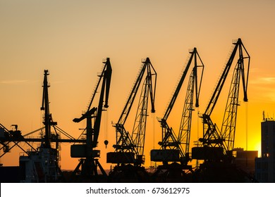 Big cranes silhouette in the port at sunset