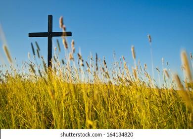 big cross on summery meadow