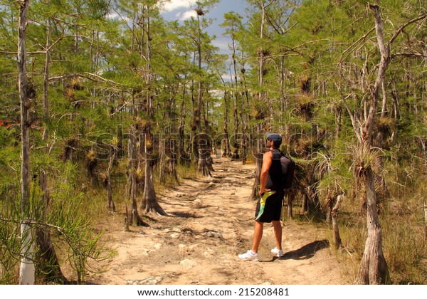 BIG CYPRESS NATIONAL PRESERVE, FL - MAY 17, 2014: Hiker takes in the scenery  along the Skillet Strand backcountry trail in the Florida Everglades May 17, 2014 in Big Cypress National Preserve, FL.