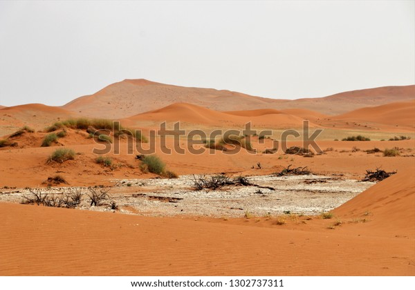 Big Daddy Sand Dune Sossusvlei Namibia Stock Photo Edit Now
