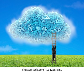 Big data and cloud computing concept.Businessman climbing wooden ladder to cloud of blue letters and numbers, on blue sky and green grass meadow background.