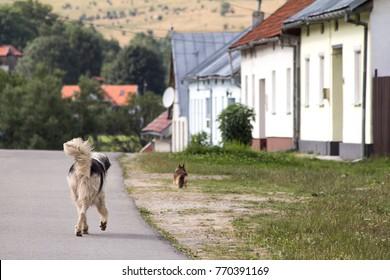 Bilder Stockfotos Und Vektorgrafiken Mioritic Shutterstock