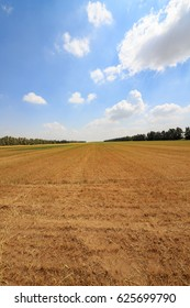 Big empty field under blue sky and clouds