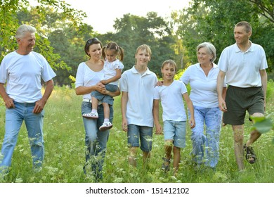 Big family is having fun in a summer park