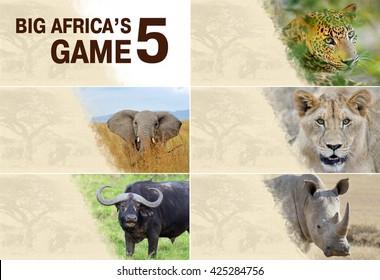 22a5ea25c3ad8 Big five africa - Lion, Elephant, Leopard, Buffalo and Rhinoceros