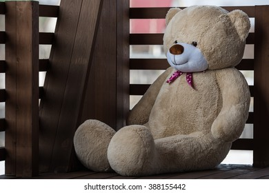 Hay Hay Chicken Stuffed Animal, Big Fluffy Teddy Bear On Deck Stock Photo Edit Now 388155442
