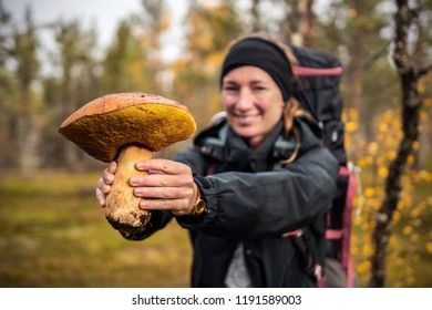 Big forest muschroom (boletus) hold by young woman, Lapland, Finland