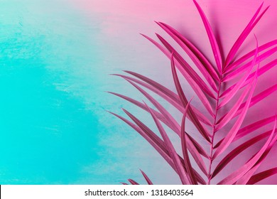 Big fresh palm leaf on duotone purple violet blue background. Trendy neon colors. Toned. Minimalist style. Contemporary unique creative image poster streamer design template. Tropical theme