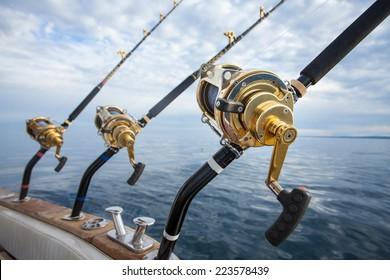 big game fishing reel in natural setting