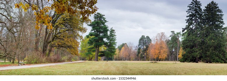 Big glade in park with deciduous and coniferous trees on the edge in late autumn, panoramic view