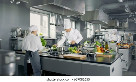 Big and Glamorous Restaurant Busy Kitchen, Chefs and Cooks Working on their Dishes.