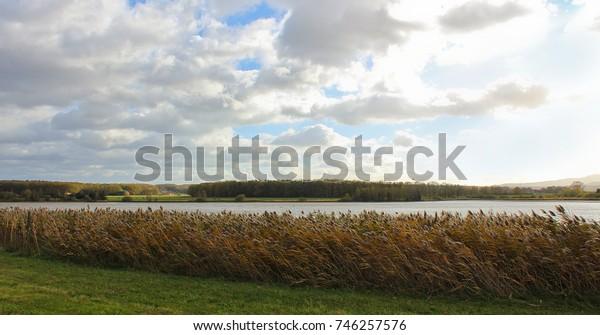 Big grass, pond and cloudy sky. Czech landscape.