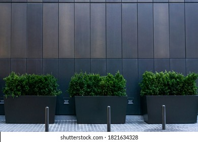 Big gray, metal planters with foliage plants and terrace design with a modern mix of construction material