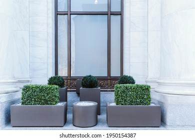 Big gray, metal planters with foliage plants and terrace design with a modern mix of construction material. Bushes against a building with big window