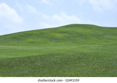 Big green grass field and blue sky background