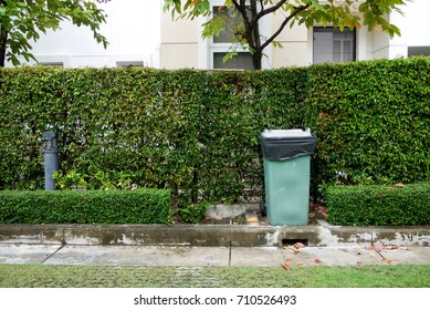 A big green trash can locates on footpath in front of green leaf wall.
