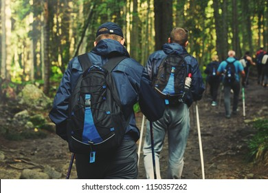 big group of hikers on the mountain trail in the Carpathian forest. teambuilding in the hike, corporate events. Team building outdoor in the forest