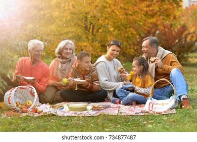 big happy family on picnic