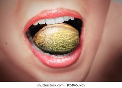 Big hemp seed in a woman'??s mouth with red lips and white teeth