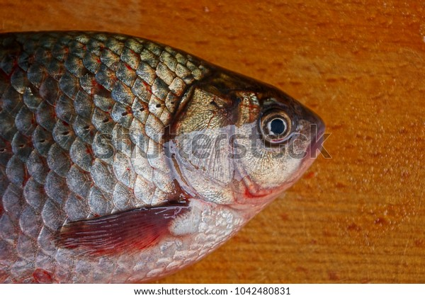 Big live crucian lies on a brown wooden board