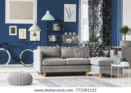 Big Living Room With Blue Walls, Grey Sofa And Plenty Of Fashionable  Accessories