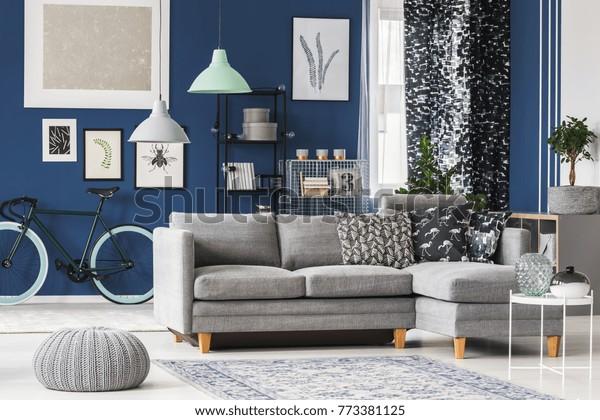 Big Living Room Blue Walls Grey Stock Photo Edit Now 773381125
