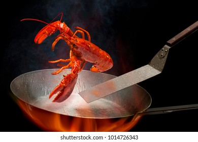 Big lobster  Dish