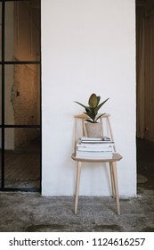 Big loft with white walls and plants, wooden and handmade furniture, big windows and daylight.