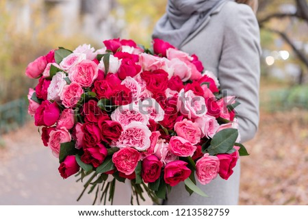 Big luxury bright bouquet in the hands of a cute girl. One hundred garden roses, varieties of David Austin. Three kinds of bright pink, scarlet and pastel colors. Autumn leaves in the Park.