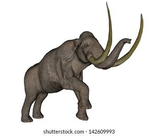 Big mammoth walking slowly in white background
