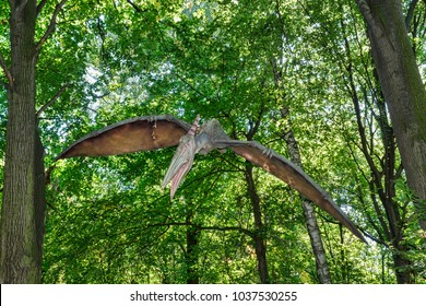 Big model of prehistoric flying dinosaur Pteranodon in nature. Realistic scenery.