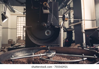 Big modern coffee roaster machine with grain chiller creating ingredients for delicious beverage locating in wide apartment. Production concept