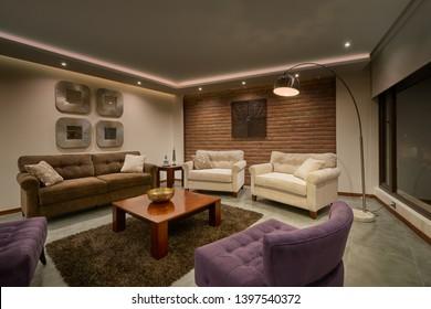 Big modern living room interior design