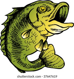 big mouth bass color drawing