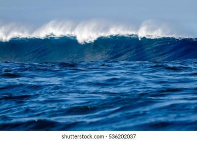 Big Ocean breaking wave, front focus intentional