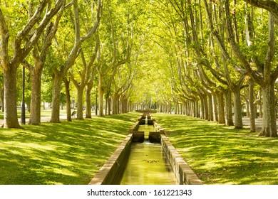 Big park  Labordeta, Zaragoza, Aragon, Spain