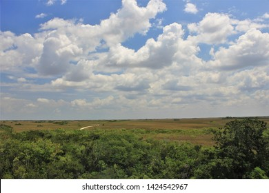 Big Partly Cloudy Sky Over Tree Tops and an Empty Road Through a Distant Savanna