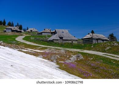 Big Pasture Plateau Velika Planina in spring