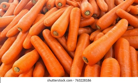 Big pile of fresh carrots from farm