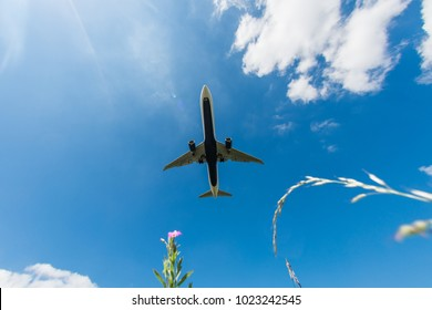 the big plane delivers passengers and cargo, lands in the airport, overfly wide view from flower field