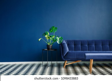 Big plant on a stool next to a comfy couch and checkered tiles set in a living room interior. Place your product