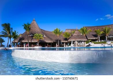 Big pool with palms