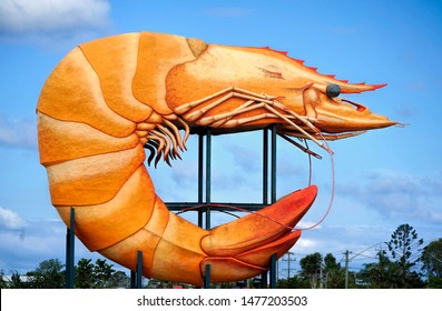 The Big Prawn sculpture, Ballina New South Wales, Australia taken on 21/1/2019