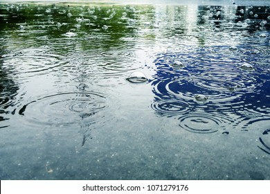 Big puddle: the rain drops falling in a puddle and drops of water on the surface ripples, water bubble and black reflection in a puddle, gray-blue color of the water.